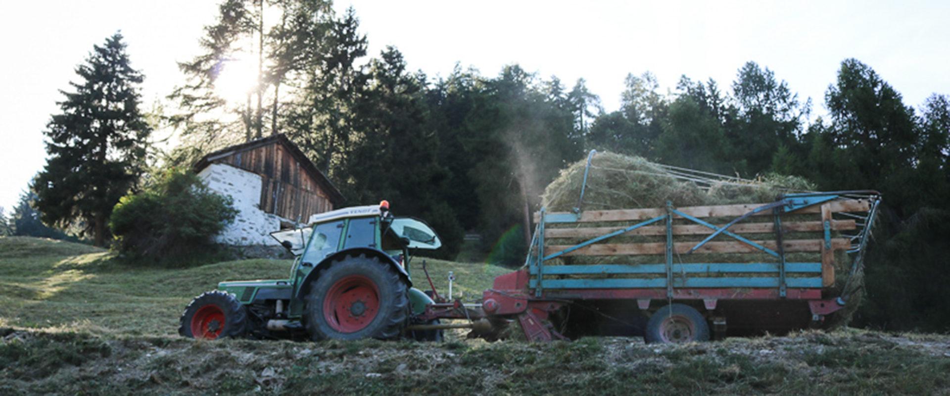 Bergbauernhilfe Traktor